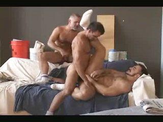 3 dad bears