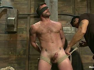 Mr Morgan Dark is taken, beaten, edged and milked.