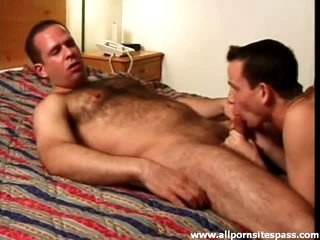 Hawt bear blown and sucking on dong in hotel