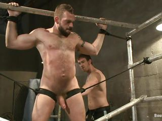 Homosexual bear Johnny is being whipped by his male friend. Such a big bushy stud all fastened and whipped can give u a serious erection. This guy screams at every whip strike and when the whipping is finished Johnny is hanged upside down and fed with some hard cock. Perhaps that guy will end up with a very big load of cock juice on his beard