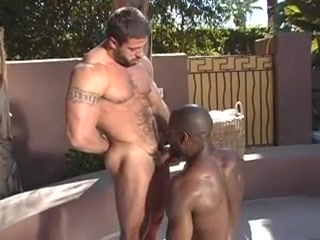 Interracial homosexual sex in the pool