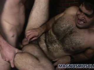 Super hairy bear screwed in the a-hole