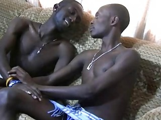 The Shower The Oral And The African Boys