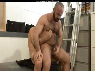 Albert & Carlo gay porn gay studs gay cumshots swallow stud hunk