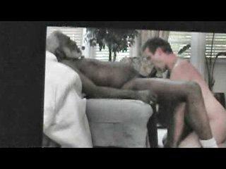 Engulfing Darksome Grandpapa HORSE 10-Pounder