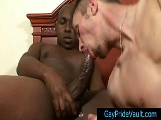 Thug getting his biggest cock sucked long and hard gaypridevault